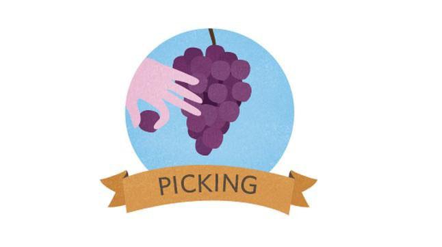 01-winemaking-151029.jpg