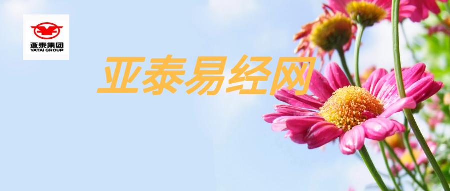 默認標題_公眾號封面首圖_2019-11-11-0.png