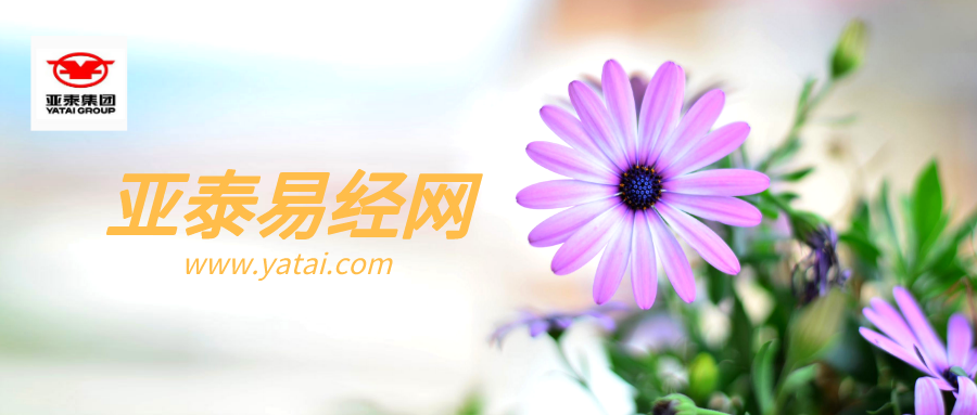 默认标题_公众号封面首图_2019-11-11-0 (3).png